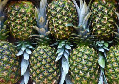 Piñas - Fruites Bon Any