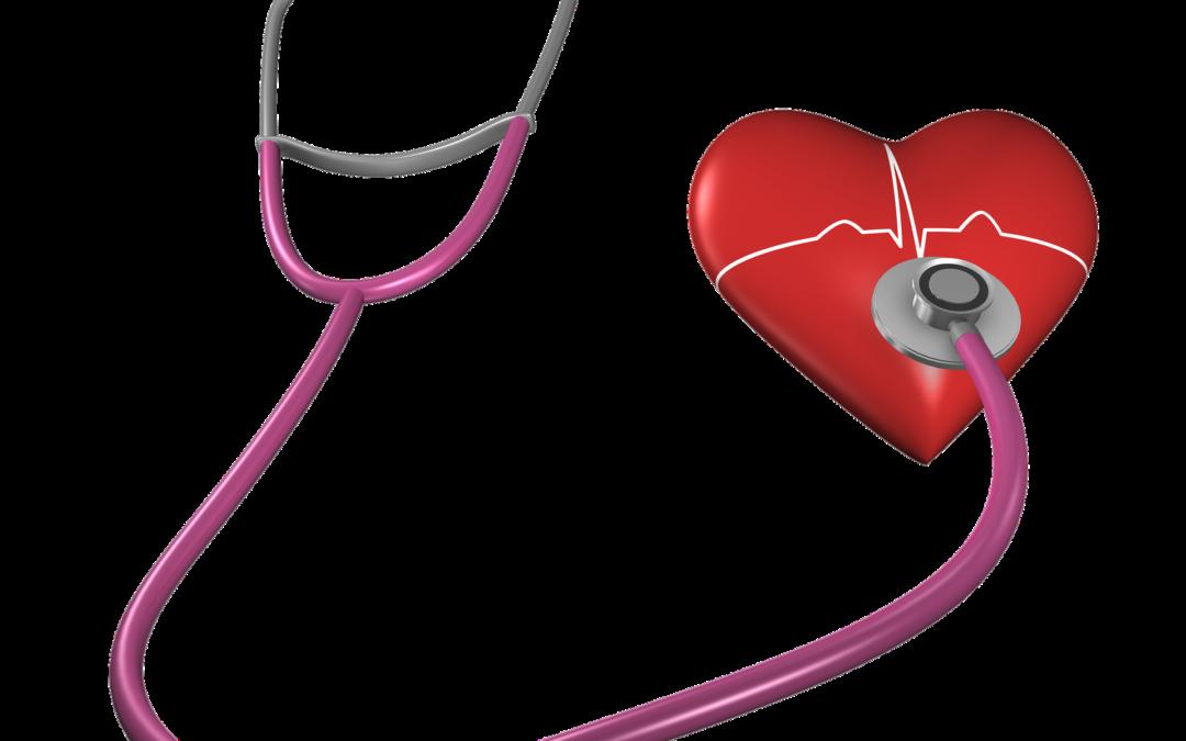 Qué aumenta y qué disminuye el colesterol