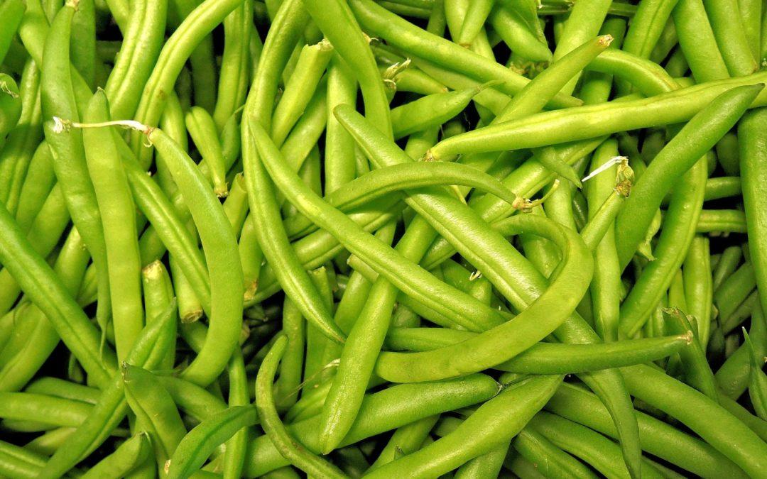 Beneficios de las judías verdes