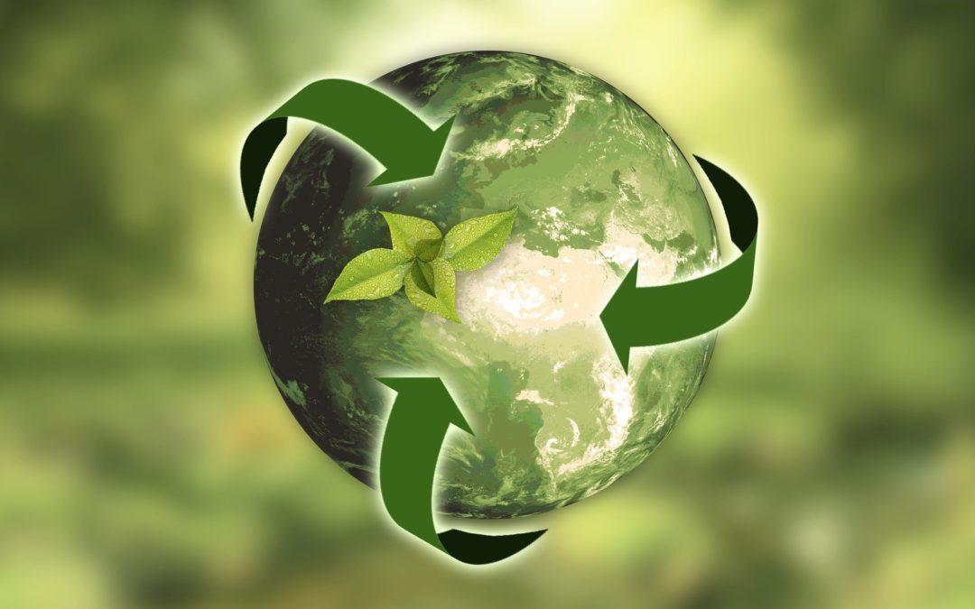 Tenir cura del medi ambient